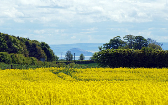 Towards Abercrombie, Fife