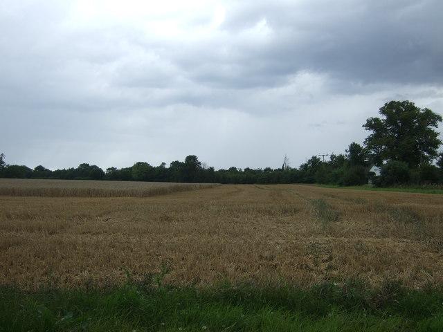 Partly harvested field near Start Farm