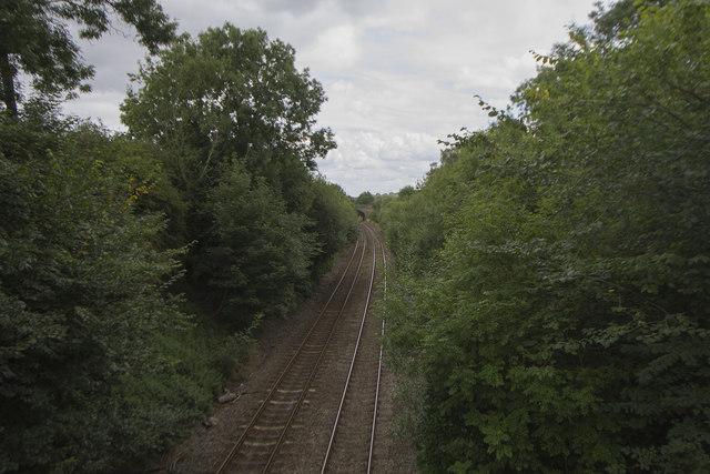 A green railway cutting