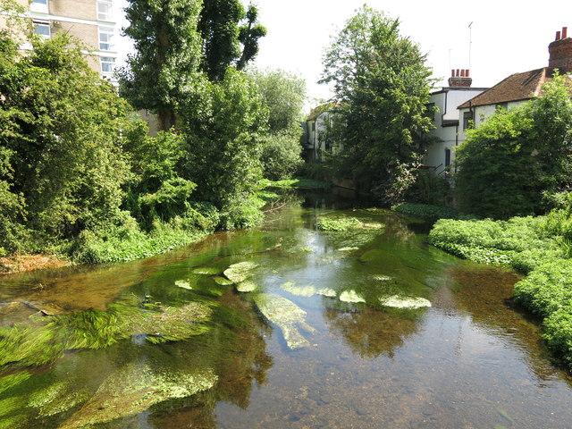 The River Colne, north of Oxford Road, Uxbridge