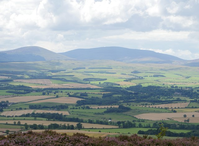 A View To The Cheviots