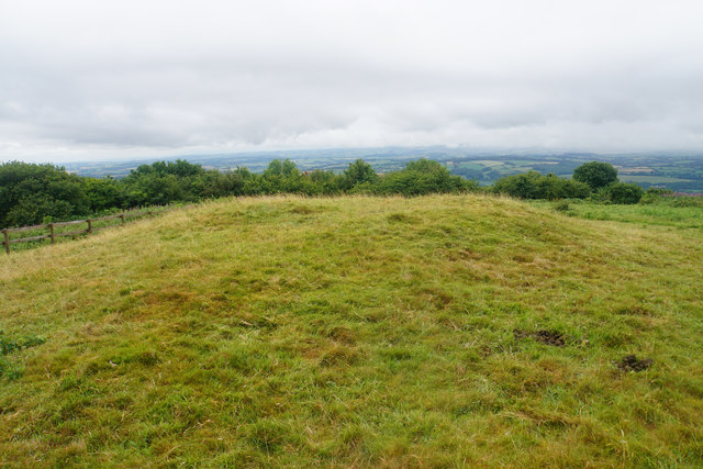 Tumulus on Cothelstone Hill