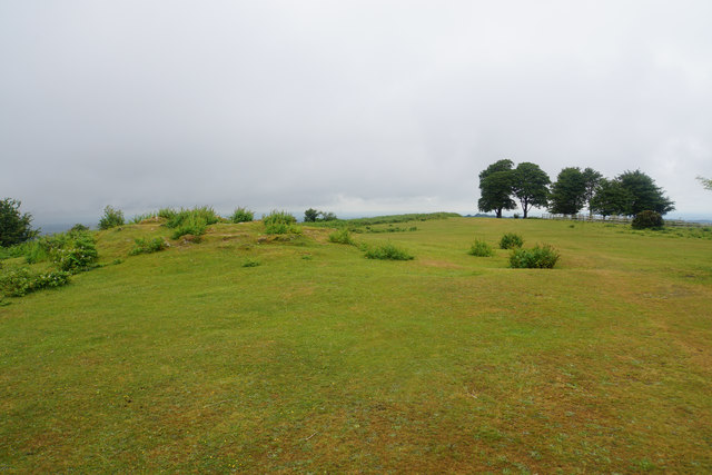 The top of Cothelstone Hill