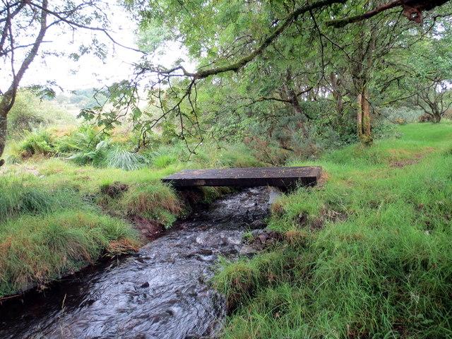 Pontdroed Ffrwd Cynon / Ffrwd Cynon Footbridge