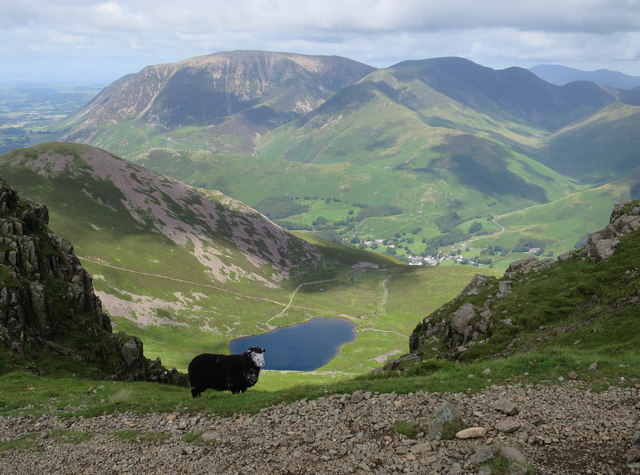 Lamb and Bleaberry Tarn