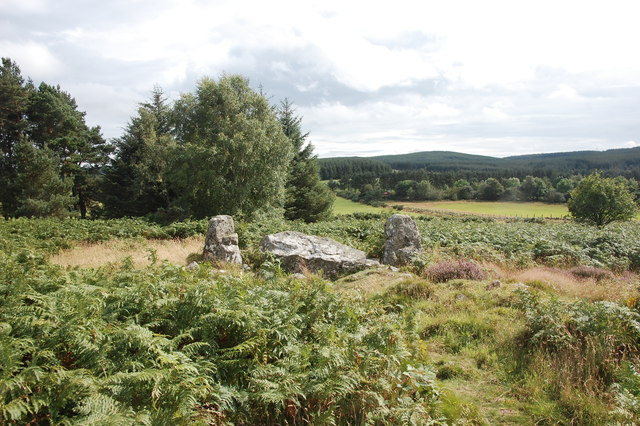 Clune Wood stone circle: recumbent and flankers