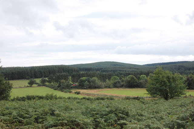 View south from Clune Wood stone circle