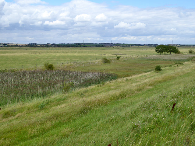 Bluehouse Farm Nature Reserve