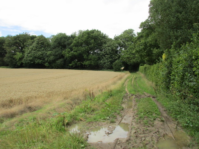 Bridleway by Joan's Acre