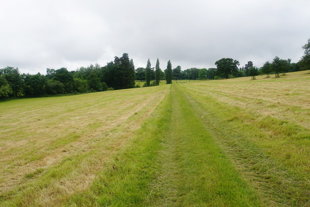 Path across the fields near Cothelstone
