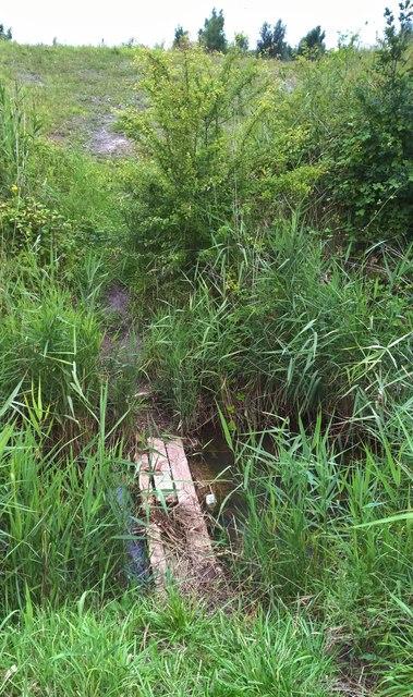 Planks across a drain