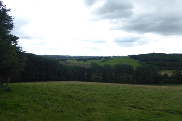 Beside Badger Wood