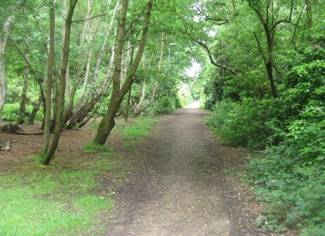 Cycle path in Queen Elizabeth Park