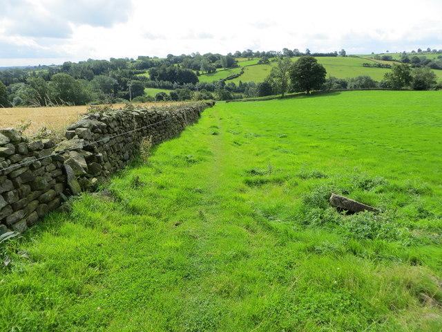 Wallside Footpath and Bridleway passing through fields near Hardgate