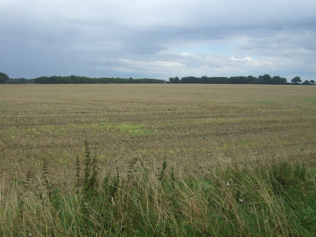 Stubble field off Spains Hall Road