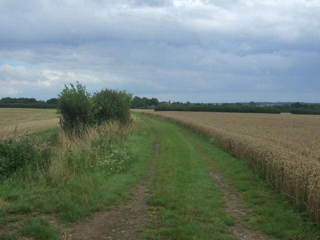 Farm track (footpath) towards Bridge Farm