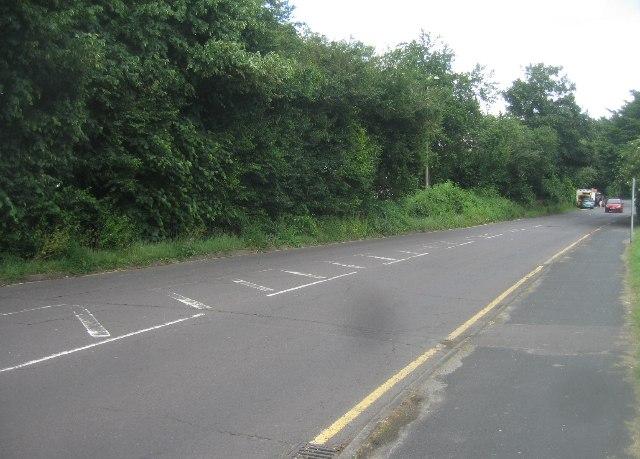 View along Grafton Way