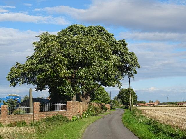 Heckdyke Lane Heckdyke West Stockwith Isle of Axholme North Lincolnshire