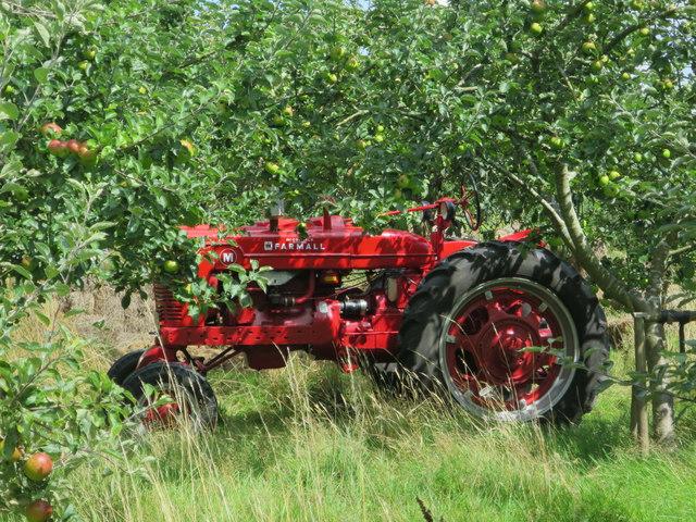 Tractor at Roger Platts Nursery