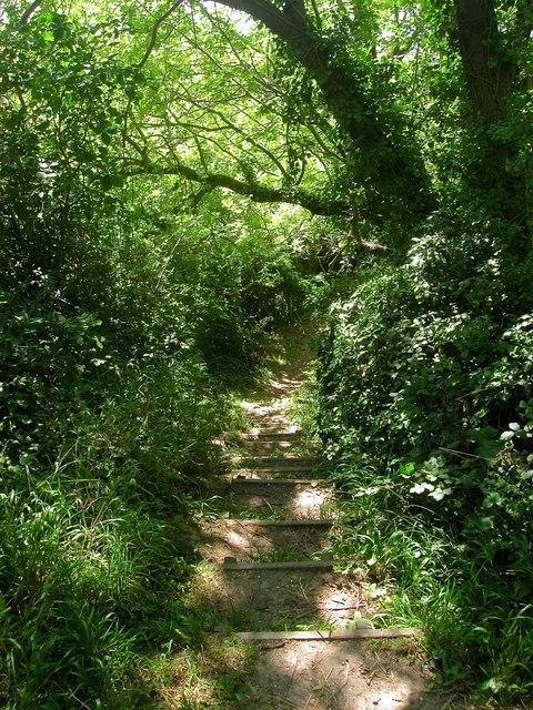 Steps, Footpath 2137