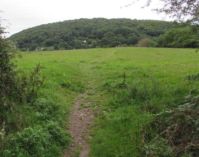 Public footpath west of Poplars Road, Mardy