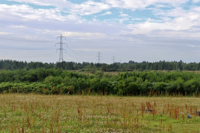 Pylon line crosses the forestry at Moss-side of Millden