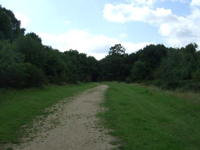 Path towards Hollow Pond