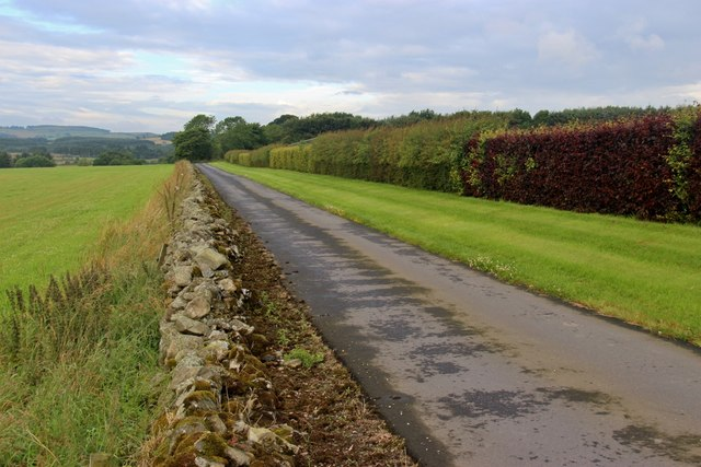 The straight approach to Boghead
