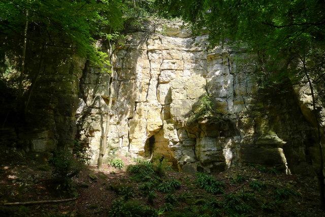 Disused quarry, Coaley Wood