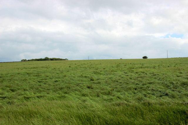 View Towards Arbor Low