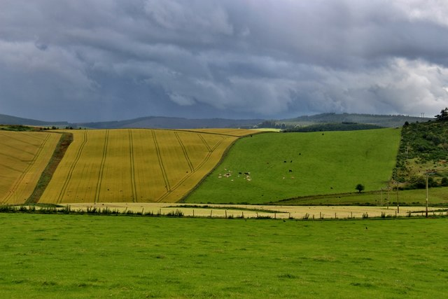 Patchwork fields at Guise and Upper Farmton