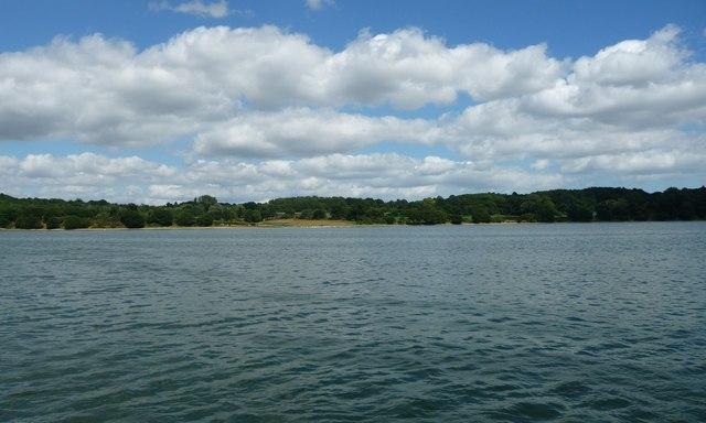 East bank of the River Orwell, near Pond Hall Farm