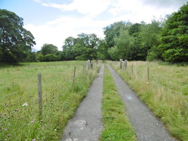 Bersham, farm road