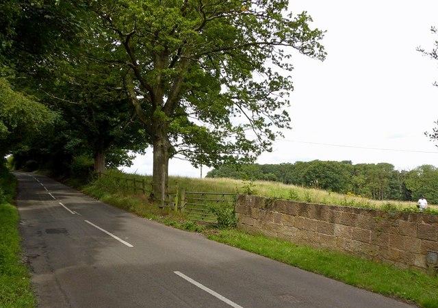 Dale Lane, Stanton-by-Dale