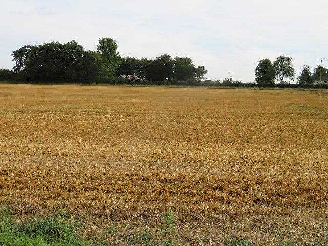 Saltash Field (12 acres)