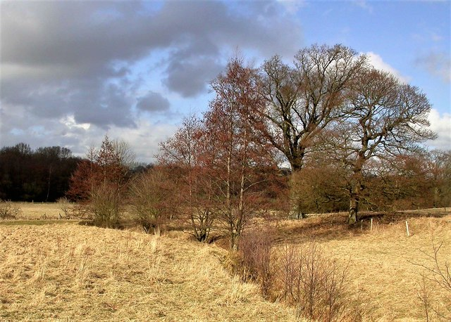 Late winter in the Brede Valley