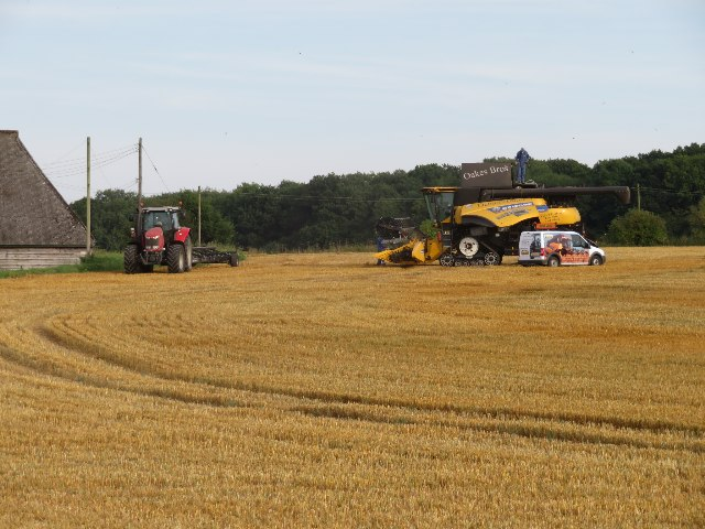 Harvest time - Saltash Field (12 acres)