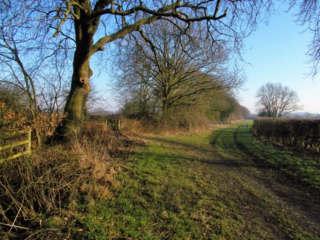 Edingley path from Farnsfield