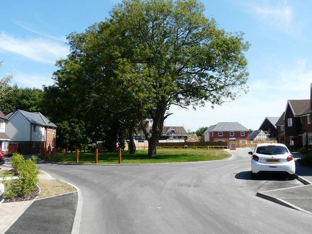 Open space, Lyons Gate