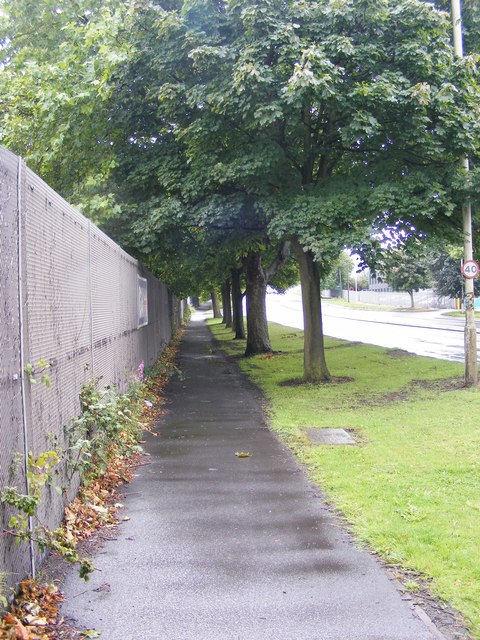 Pavement Avenue