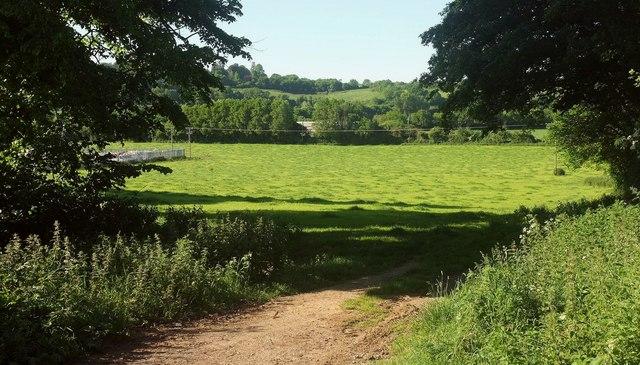 Field by A356