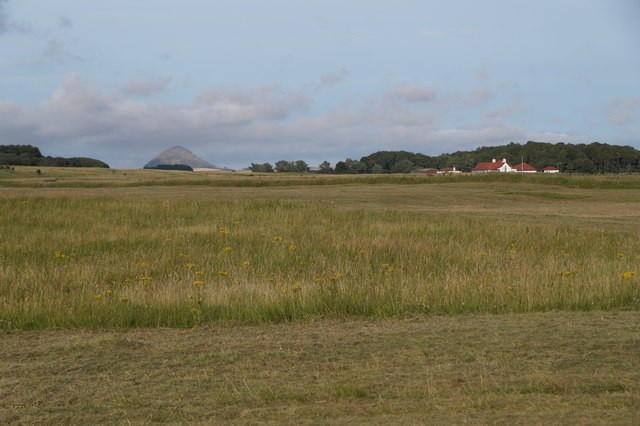 Fields at Aberlady Bay
