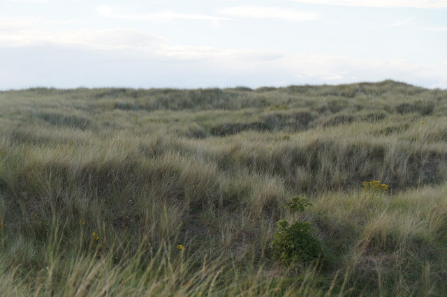 Looking NW in the dunes at Aberlady Bay