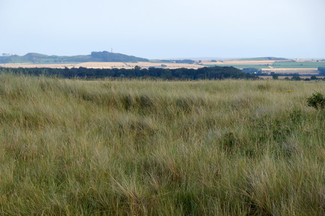 Looking SE in the dunes at Aberlady Bay