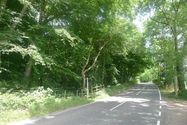 Footpath entering Stockend Wood