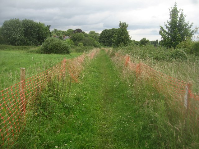 Footpath to Worting