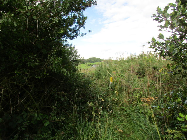 Footpath to Cowley