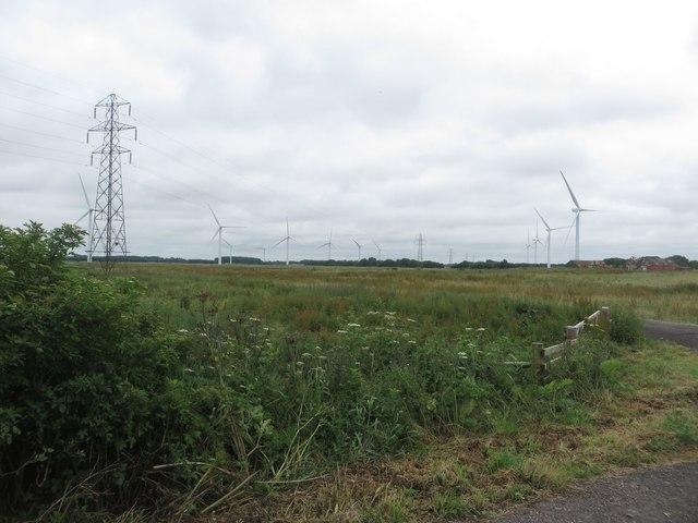 Arable land and wind turbines