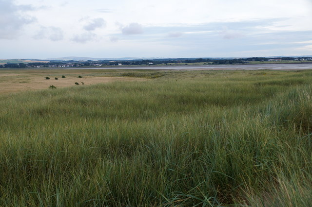 The dunes at Aberlady Bay