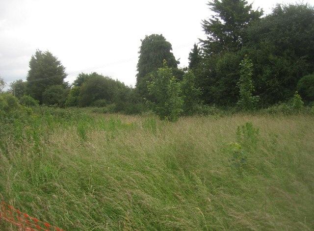Rough land behind Worting